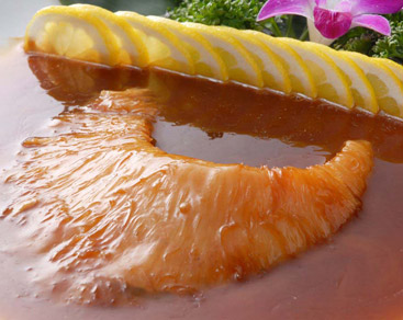 豪華「フカヒレ姿煮」「季節鮮魚姿蒸し」 11,000円⇒10,000円(4名様より)